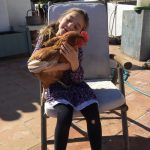 Our brown chickens loved to be hugged