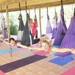 Yoga Swings in the Shala