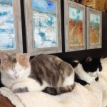 Cats in the art studio